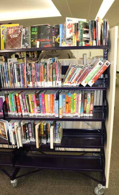 Find the DXF-T books in the shelf that faces the computers (in the Teen Area).