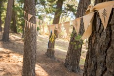 Bunting-between-trees