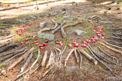 Red-pebble-circle