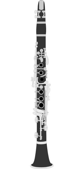This is a clarinet