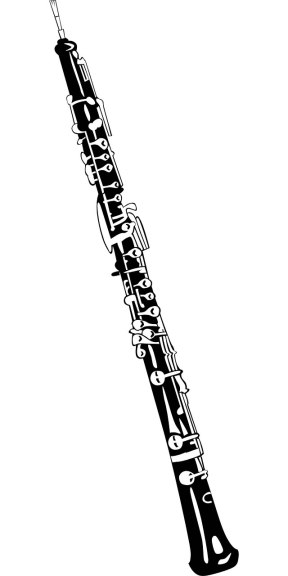 This is an oboe